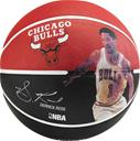 SPALDING NBA Derrick Rose Str. 5